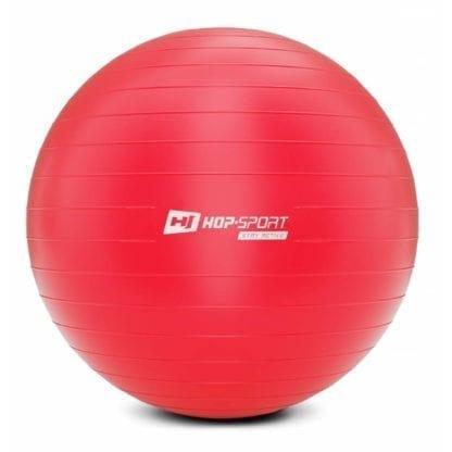 Фитбол Hop-Sport 85cm красный + насос 2020