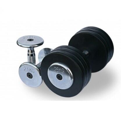 Обрезиненный гантельный ряд от 2.5 до 25 кг (10 пар) Fitnessport (FDS-03 2,5/25kg)