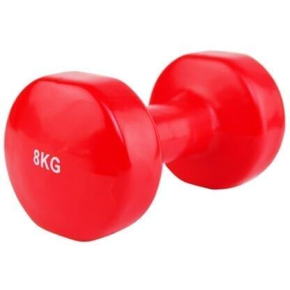 Гантели виниловые Stein 8 кг (LKDB-504A-8)
